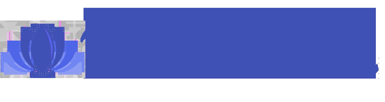 meditherma-logo